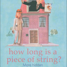 How Long Is a Piece of String? More Hidden Mathematics of Everyday Life - Rob Eastaway, Jeremy Wyndham