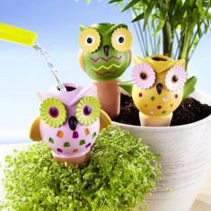 3 recipiente pentru irigare plante Bufnite