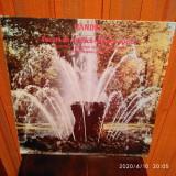 -Y-  HANDEL -  Focuri De Artificii / Muzica Apelor - VINIL