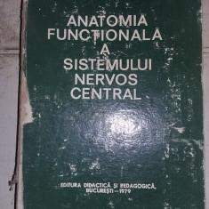 ANATOMIA FUNCTIONALA A SISTEMULUI NERVOS CENTRAL-Armand Andronescu,79,T.GRATUIT