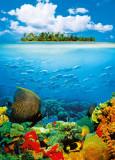 Cumpara ieftin Fototapet 00374 Insula tropicala