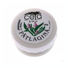 Unguent Patlagina Ceta 20gr Cod: ceta00016