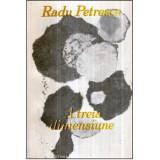 A treia dimensiune, Radu Petrescu