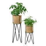 [en.casa]® Suport plante 2 bucati ABMM-2158, metal, negru/auriu, cu picioare hairpin, masuri diferite HausGarden Leisure, [en.casa]