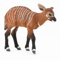Pui de Antilopa Bongo M - Animal figurina