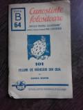 101 FELURI DE MANCARURI DIN OUA - SANDA MARIN