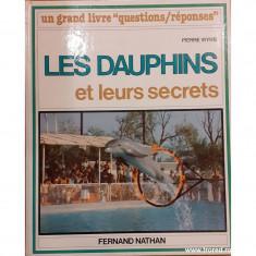 Les dauphins et leurs secrets