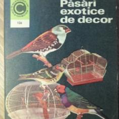 PASARI EXOTICE DE DECOR - STEFAN DELEANU