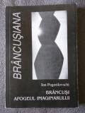 Ion Pogorilovschi - Brâncuşi, apogeul imaginarului: comentarea capodoperei...