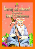 Povestiri de Emil Garleanu  