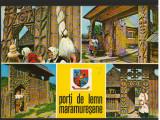 CPI B12317 CARTE POSTALA - PORTI DE LEMN MARAMURESENE