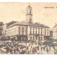 SV * BUCOVINA  *  CERNAUTI  *  PRIMARIA si PIATA CENTRALA  animata  *  1908