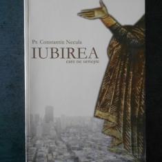 CONSTANTIN NECULA - IUBIREA CARE NE URNESTE