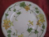 FARFURIE / FRUCTIERA / PLATOU TORT PORTELAN VILLEROY&BOCH GERANIUM 26.5 CM