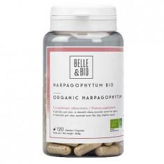 Gheara Diavolului Bio (Harpagophytum Bio) 120 capsule