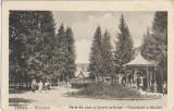 Carte poștală – Valcele, parte din parc cu Izvorul principal