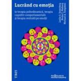 Lucrand cu emotia in terapia psihodinamica, terapia cognitiv-comportamentala si terapia centrata pe emotii - Leslie S. Greenberg, Norka T. Malberg, Mi