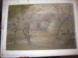 ulei pe panza lipita pe carton dim 31x21 cm fara rama x38
