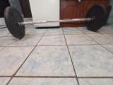 Gantera 61.8kg, Peste 40, Domyos