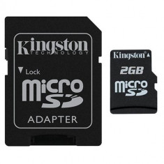 Card KINGSTON MicroSD 2GB