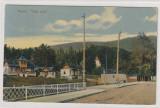 Busteni , Valea Alba, Circulata, Printata