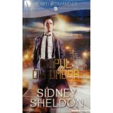 Chipul din umbra, Sidney Sheldon