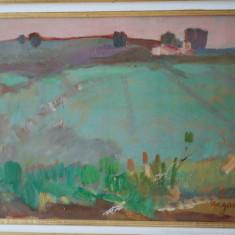 Tablou pictura Ion Popescu Negreni - Ferma, Peisaje, Ulei, Impresionism