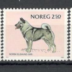Norvegia.1983 Rase de caini  KZ.875