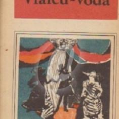 Vlaicu-voda (Ed. Ion Creanga)