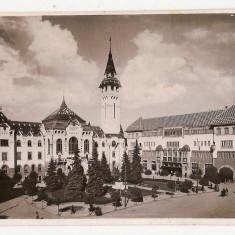 Targu Mures Primaria si Palatul Cultural Marosvasarhely, Necirculata, Printata