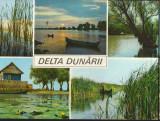 CPIB 16598 CARTE POSTALA - DELTA DUNARII, MOZAIC, Circulata, Fotografie