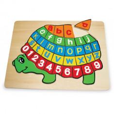 Puzzle din lemn ABC broasca testoasa