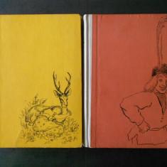 FRATII GRIMM - POVESTI ALESE 2 volume (1960, ilustratii de Ligia Macovei)