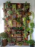 Pergola perete, 120 x 200 cm, lemn masiv