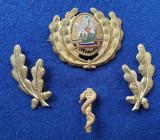 Insigna Militara Ofiter MEDIC Doctor - Coifura insemn cascheta SEMN DE ARMA