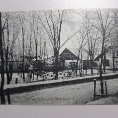 OCNA MURES - MAROSUJVAR - BAILE SARATE - PEISAJ HIBERNAL - INCEPUT DE 1900, Circulata, Fotografie