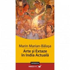 Arte si Extaze in India Actuala - Marin Marian-Balasa