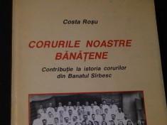 CORURILE NOASTRE BANATENE-COSTA ROSU- foto