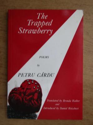 Petru Cardu - The trapped strawberry foto
