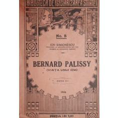 BERNARD PALISSY - ION SIMIONESCU