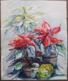 Ghivece cu flori - semnat  R.K. '83