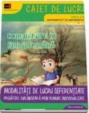 Comunicare in limba romana. Clasa II/Daniela Berechet, Florian Berechet, Jeana Tita, Lidia Costache