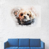 Tablou Canvas, Pictura Caine Samoyed - 60 x 90 cm