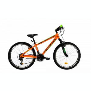 Bicicleta Copii Dhs 2423 Portocaliu 24