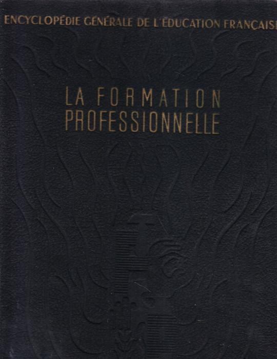 LA FORMATION PROFESSIONNELLE CARTEA ESTE IN LIMBA FRANCEZA