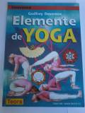 Godfrey Devereux - Elemente de Yoga