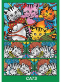 Cutie de colorat pe carton absorbant - Pisicuta