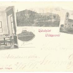 2752 - SIRIA, Arad, Litho, Romania - old postcard - used - 1901, Circulata, Printata