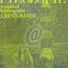 Filozofie. Tematica, bibliografie, crestomatie