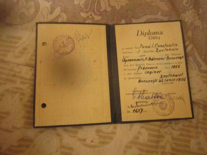 diploma inginer zootehnist an 1956 n217